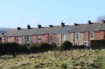 Lavender & Wilson, Specialist Housing Training & Consultancy