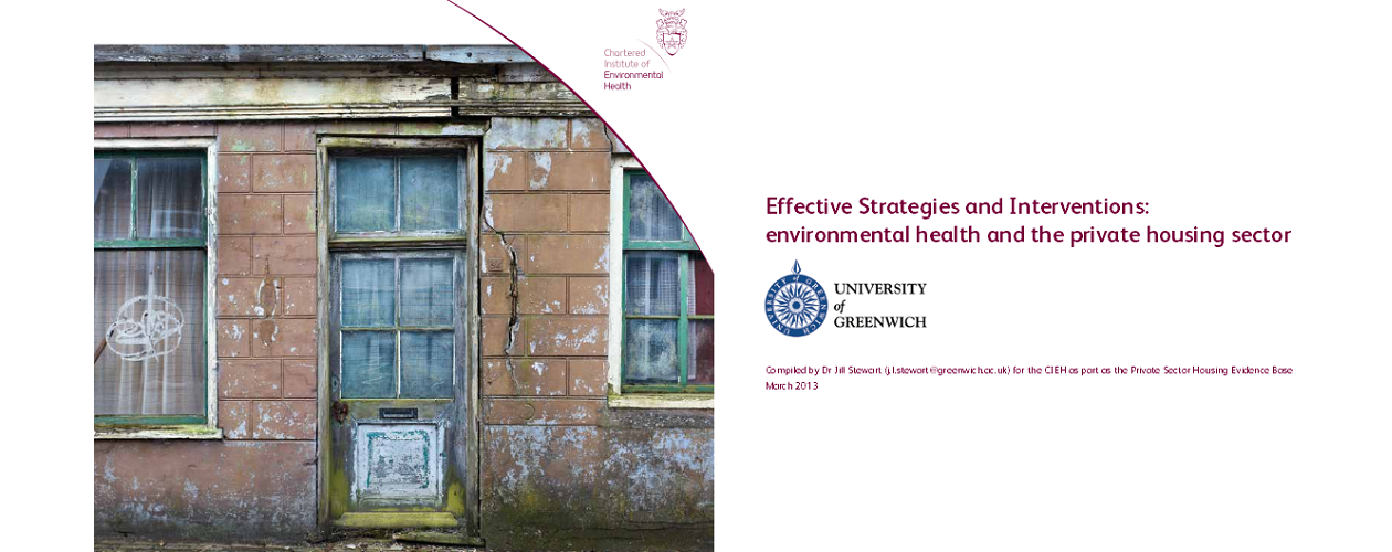 Housing: Private housing sector efffective strategies & interventions published
